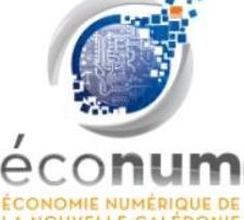 Cellule Économie Numérique (ÉcoNum)